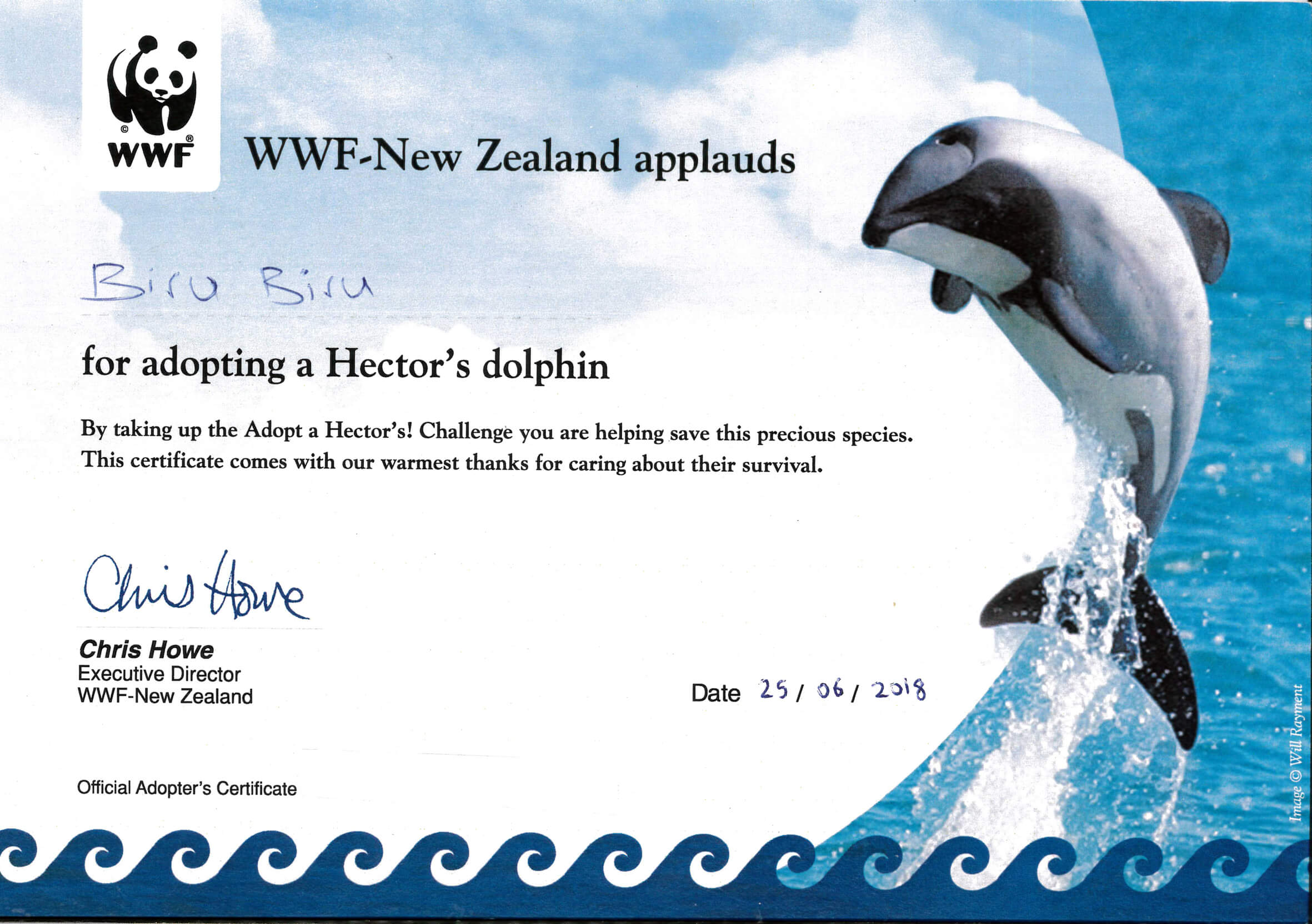 WWF BIRU BIRU Adoption Delfin